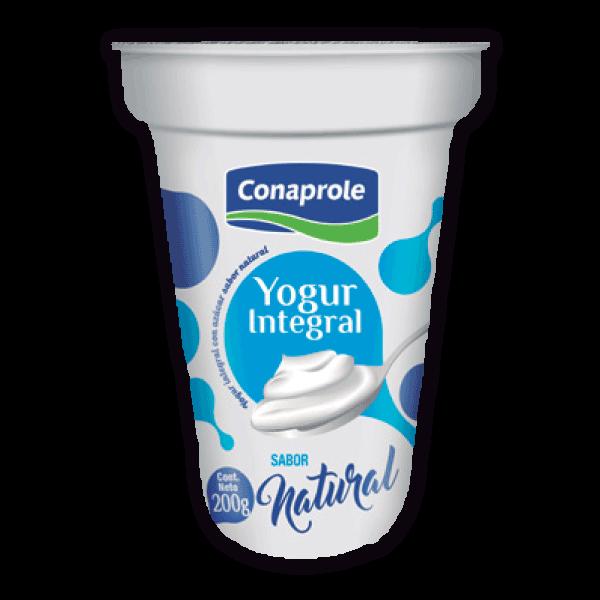 Yogur Integral Natural
